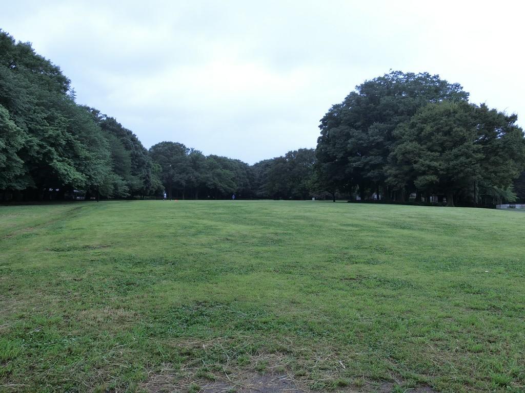 砧公園芝生の広場